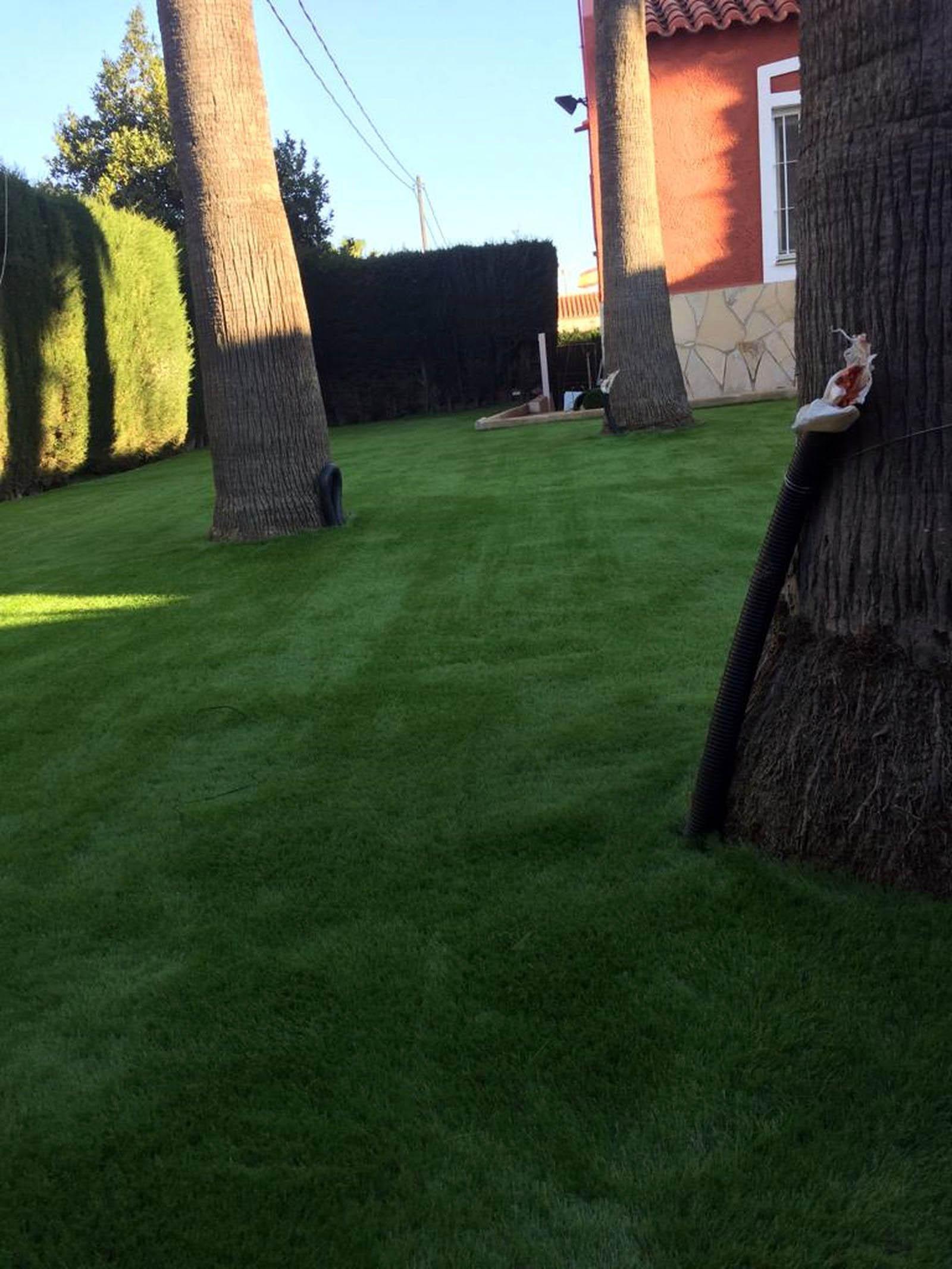 Instalar-cesped-artificial-jardin-la-nucia-alicante